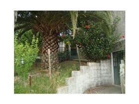 Image No.6-Maison de 3 chambres à vendre à Carregueiros