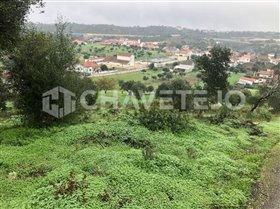 Image No.1-Terrain à vendre à Carregueiros