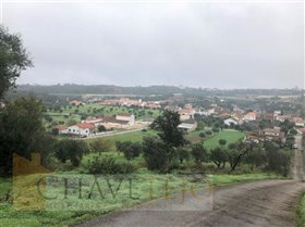 Image No.2-Terrain à vendre à Carregueiros