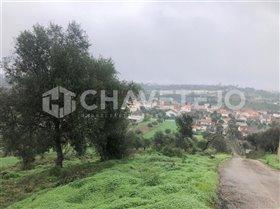 Image No.7-Terrain à vendre à Carregueiros