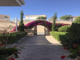 Image No.1-Maison / Villa de 4 chambres à vendre à Peyia