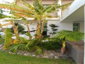 Image No.12-Villa de 4 chambres à vendre à Limassol