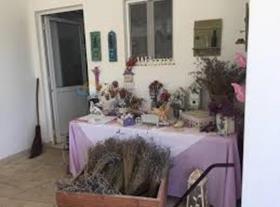 Image No.5-Bungalow de 2 chambres à vendre à Avgorou