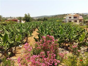 three-bedroom-villa-for-sale-at-st-george-area-of-peyia_full_12