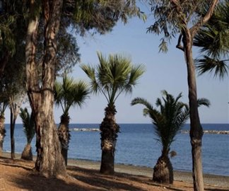 109440-apartment-for-sale-in-mouttagiaka_full