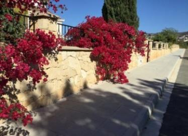 23985-detached-villa-for-sale-in-tala_full