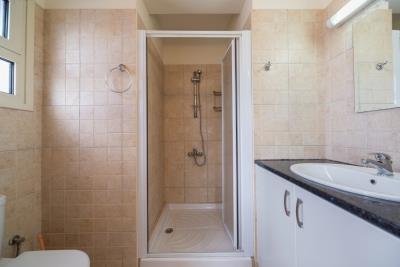 ensuit-shower