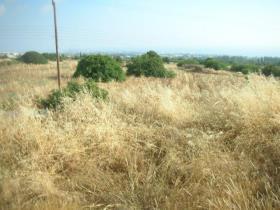Image No.1-Terre à vendre à Tala