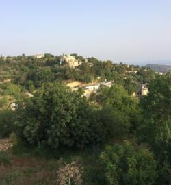 16743-residential-land-for-sale-in-armou_full