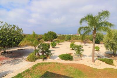 37221-bungalow-for-sale-in-agios-georgios_full