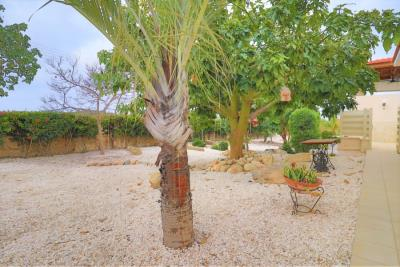 37223-bungalow-for-sale-in-agios-georgios_full