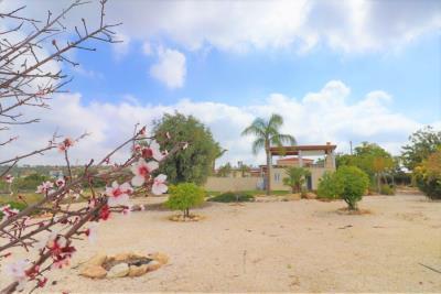 37227-bungalow-for-sale-in-agios-georgios_full