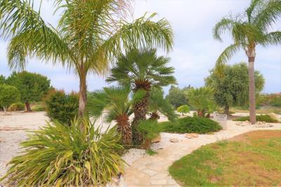 37225-bungalow-for-sale-in-agios-georgios_full