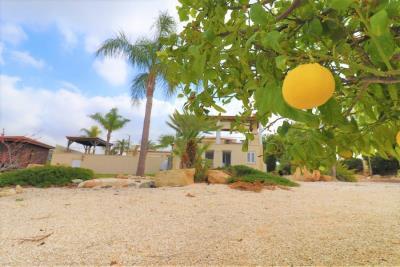 37228-bungalow-for-sale-in-agios-georgios_full