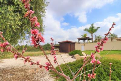 37229-bungalow-for-sale-in-agios-georgios_full