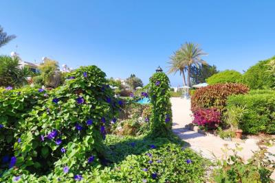 39217-town-house-for-sale-in-kato-pafos_full
