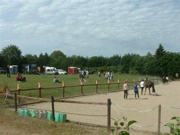 A horse show June 2014 015