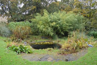 15758_0477-pond