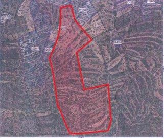 mapa-topografico-delineado