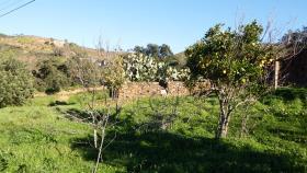 Image No.1-Ferme de 5 chambres à vendre à Santa Catarina da Fonte do Bispo