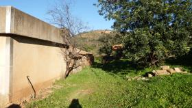 Image No.3-Ferme de 5 chambres à vendre à Santa Catarina da Fonte do Bispo