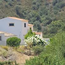 Image No.1-Villa de 6 chambres à vendre à Tavira