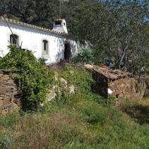 Image No.2-Ferme à vendre à Santa Catarina da Fonte do Bispo
