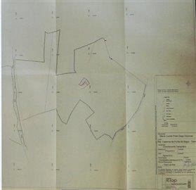 plan-7