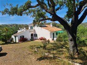 Image No.12-Villa de 3 chambres à vendre à Santa Catarina da Fonte do Bispo