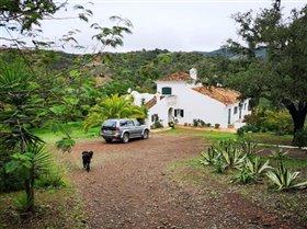 Image No.13-Villa de 3 chambres à vendre à Santa Catarina da Fonte do Bispo