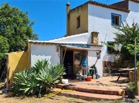 Image No.9-Ferme de 2 chambres à vendre à Moncarapacho