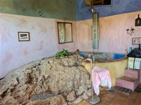 Image No.6-Ferme de 2 chambres à vendre à Moncarapacho