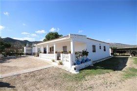 Image No.6-Villa de 5 chambres à vendre à Yecla