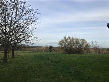 Garden-and-views-winter