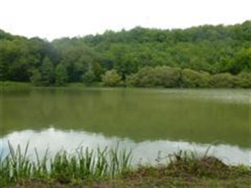 1745-for-scanning-LAKE-PANORAMA-CENTRE--Large---WinCE-