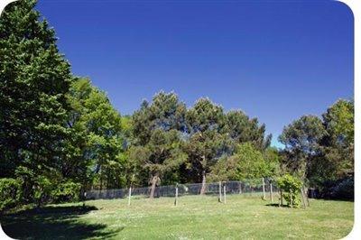 Garden-and-woodland