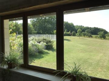 Garden-View-from-Sitting-Room