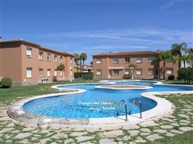 Oliva, Apartment