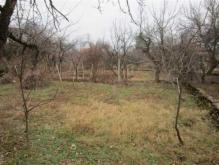 Image No.5-Maison de village de 3 chambres à vendre à Gostilitsa