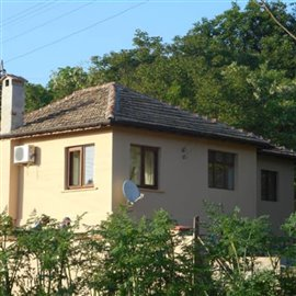 1 - Tsar Kaloyan, Property