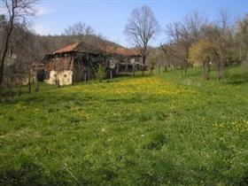 Image No.3-Terrain à vendre à Voynezha