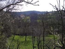 Image No.4-Terrain à vendre à Voynezha