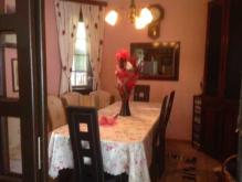 Image No.5-Propriété de 4 chambres à vendre à Samokov