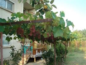 Image No.6-Propriété de 3 chambres à vendre à Ivanovo