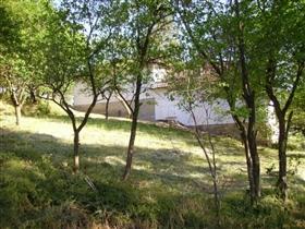 Image No.11-Propriété de 3 chambres à vendre à Dve Mogili
