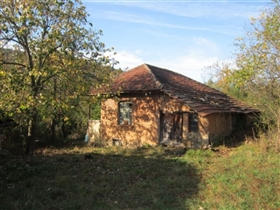 1. Country Property for sale