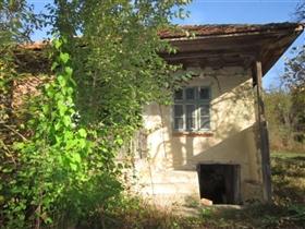 Image No.3-Propriété de 5 chambres à vendre à Veliko Tarnovo