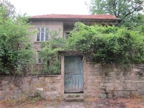 Zaya, Property