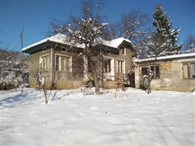 Tsareva Livada, Property