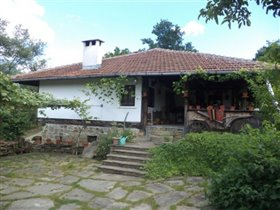 Donkovtsi, Country Property